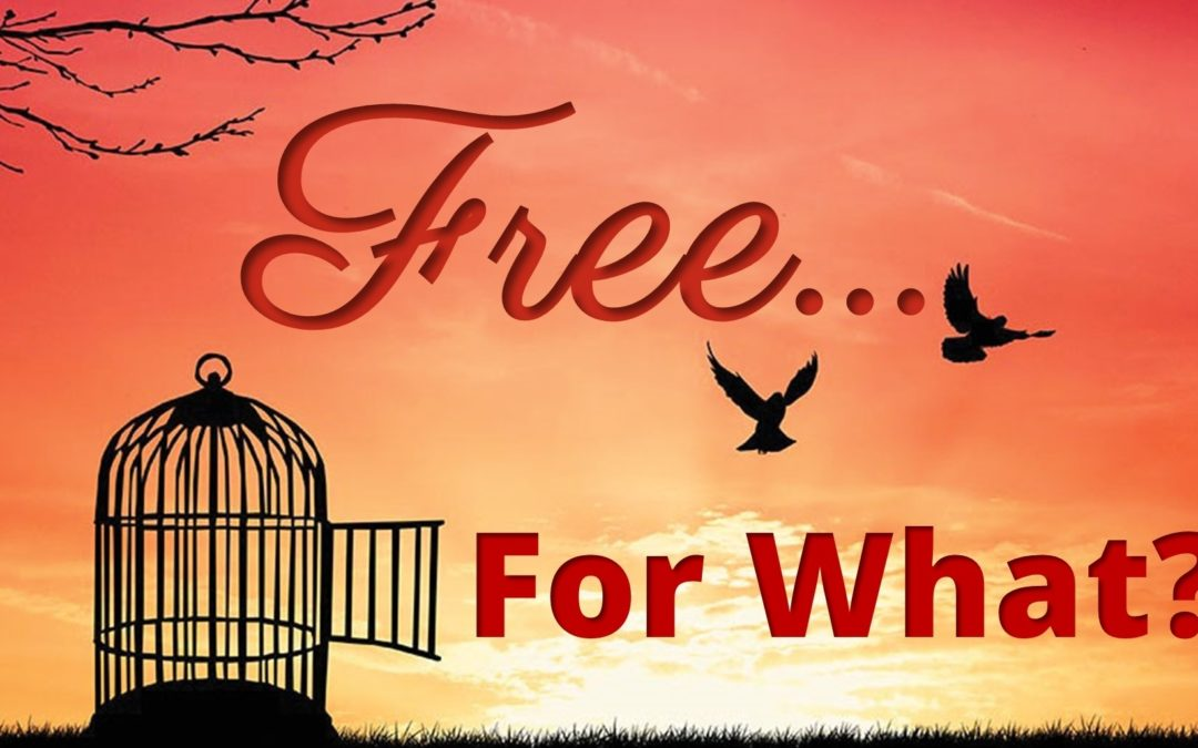 Free For What?