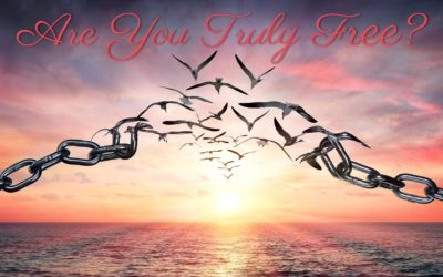 Are You Truly Free?